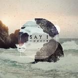 Say I