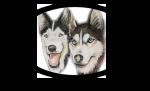 WolfPack Playden.com